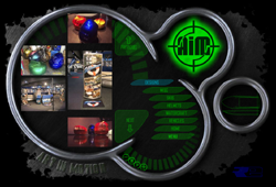 AIM Auto Graphics Website